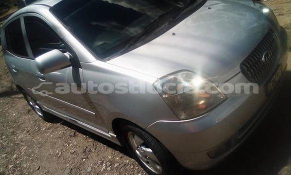 Buy Used Kia Picanto White Car in Castries in Castries